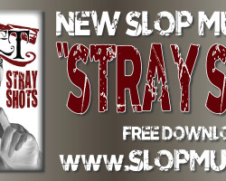 "Download ""Stray Shots"" HERE!"